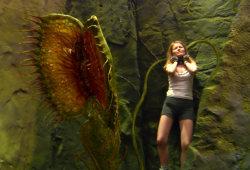 Anita Briem in una scena di Viaggio al centro della Terra