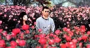 Kyoko Fukada e Tsutomu Takeshige in Dolls