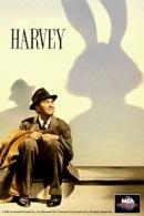 La fascetta del DVD statunitense di Harvey