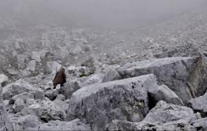 Una scena di Monte