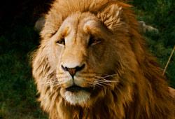 Aslan in Le cronache di Narnia: Il leone, la strega e l'armadio