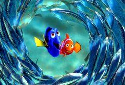 Dory e Marlin in Alla ricerca di Nemo