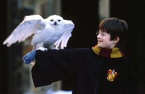 Daniel Radcliffe in Harry Potter e la pietra filosofale