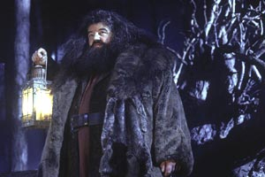 Robbie Coltrane in Harry Potter e la pietra filosofale