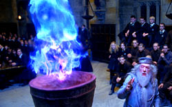 harry potter e il calice di fuoco - photo #17