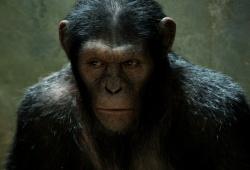 Una scena di L'alba del pianeta delle scimmie