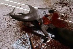 Una scena di Sharknado